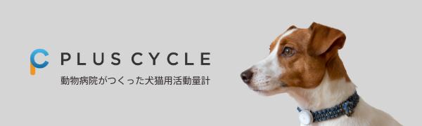 PlusCycleロゴ