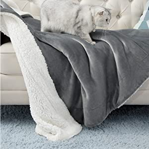 couch blanket