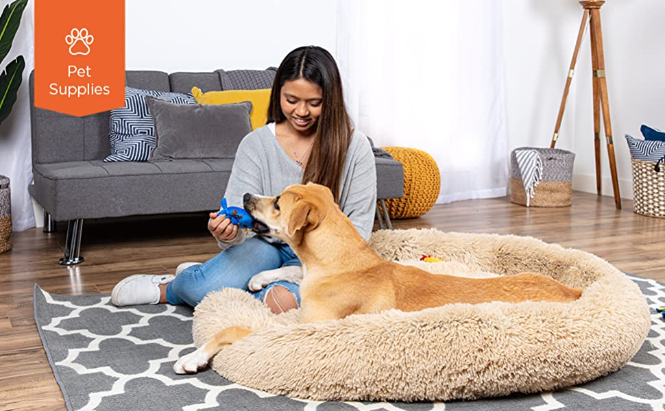 happy woman playing with her pet on a pet bed