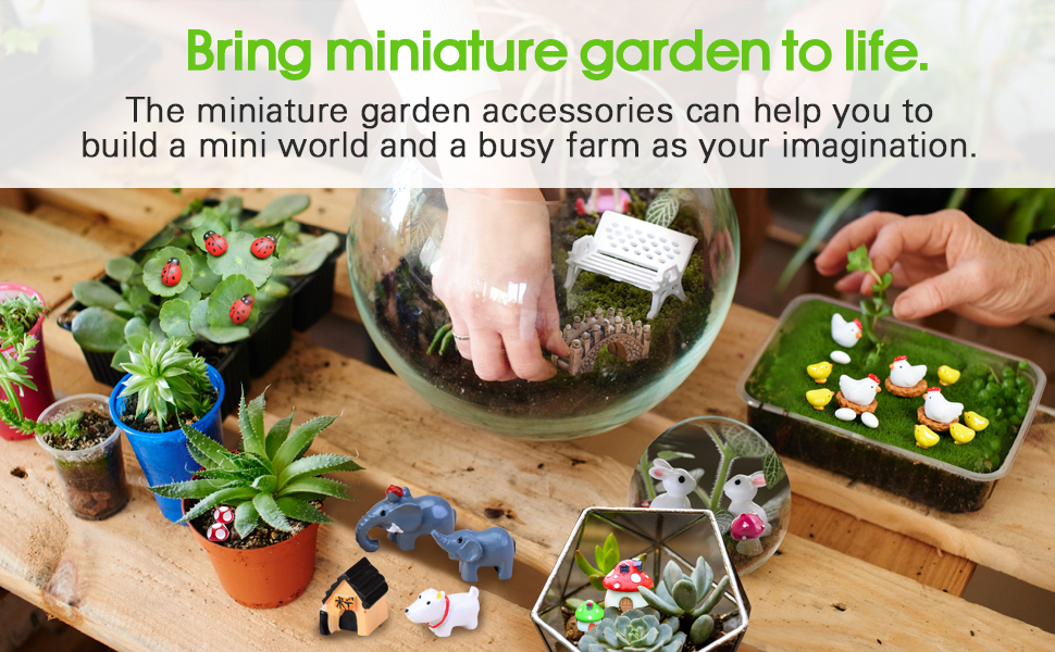 Bring miniature garden to your life.