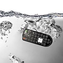 IP 66 remote control