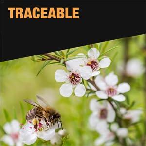 kiva manuka honey tracable