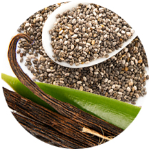 Lifetime Life's Basics Plant Based Protein Powder Natural Vanilla Vegan Gluten Free