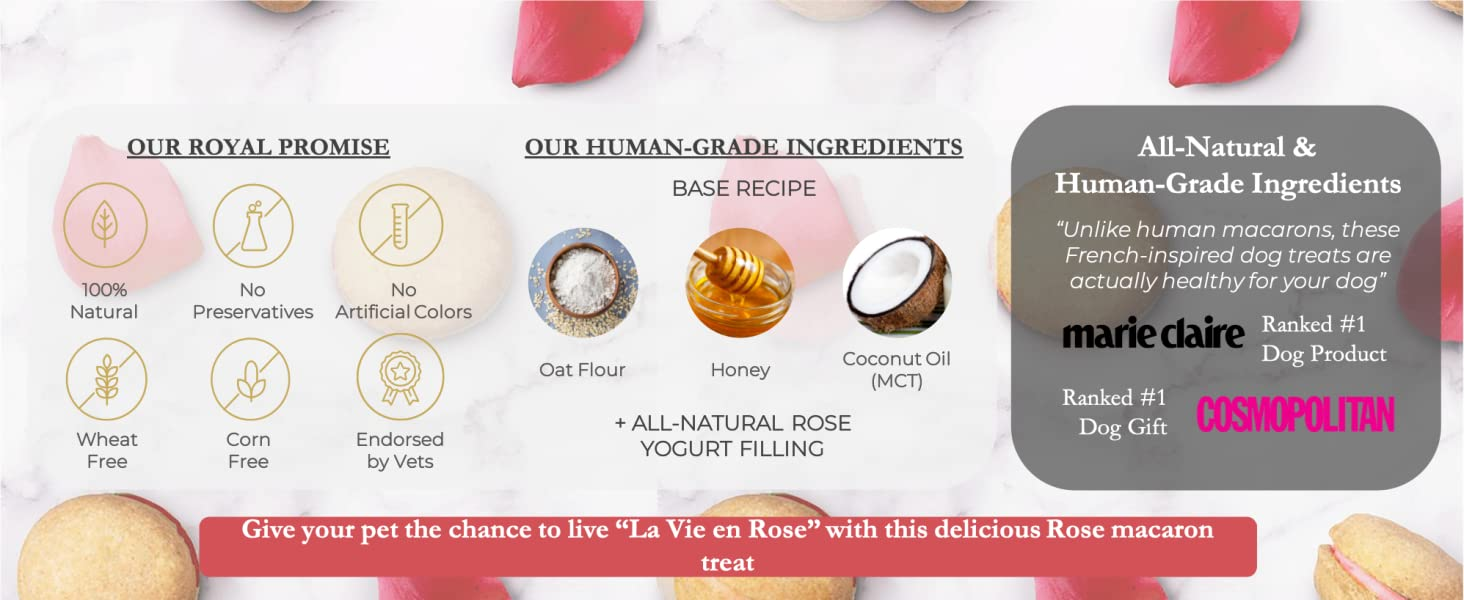 Dog Macarons macaroons rose treats biscuit healthy all-natural USA Handmade Honey Coconut vets