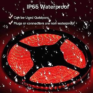 IP65 Waterproof design