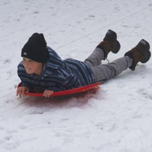 adult sled