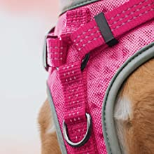 dog harness with handle, strong dog harness, adjustable dog harness, dog harness medium, walking