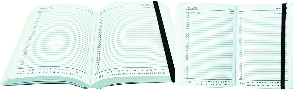 Internals of A6 Page a Day Diary