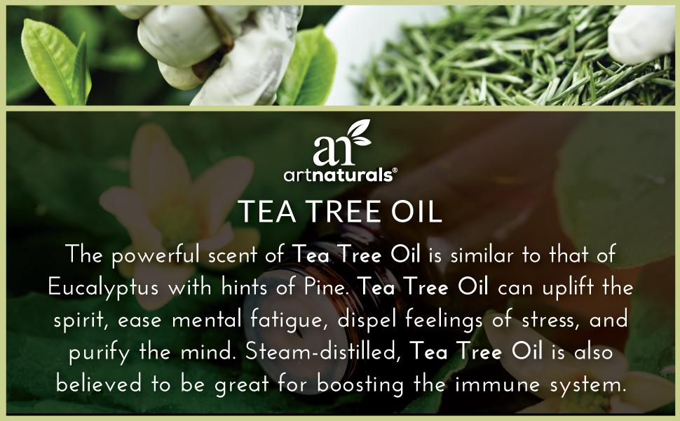 Tea Tree eucalyptus peppermint athletes feet diffuser massage lavender aromatherapy exercise