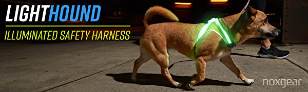 Noxgear LightHound Illuminated Safety Harness for Dogs