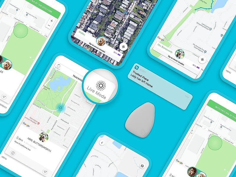 Jiobit Pet Collar GPS Location Tracker