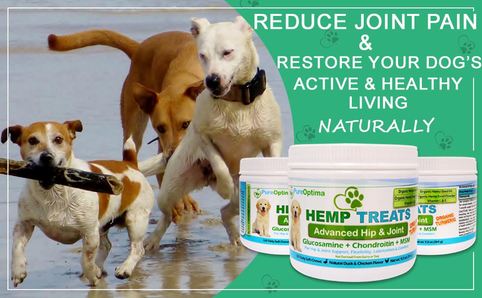 hemp Hip and Joint Pain Relief Arthritis MSM Turmeric Glucosamine anti inflammatory Chondrotin Hemp