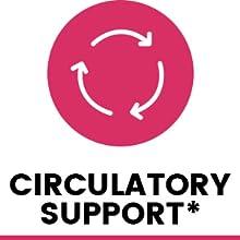 Circulatory support