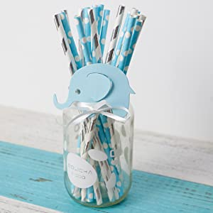 blue silver paper straws gender reveal balloon rustic bohemian centerpiece backdrop teddy lumberjack