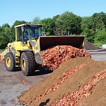 Quoddy Blend Lobster compost made with made with actual chitin and calcium-rich lobster shells