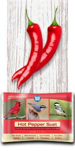 hot pepper bird suet