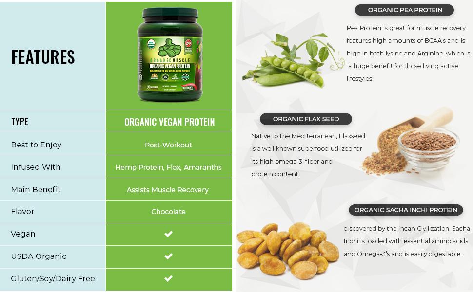 Organic Vegan Protein Features