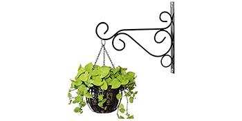 plant hooks