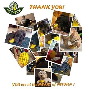 PET-FUN Mango Dog Chew Toy Strong Tough Safe Fun Durable