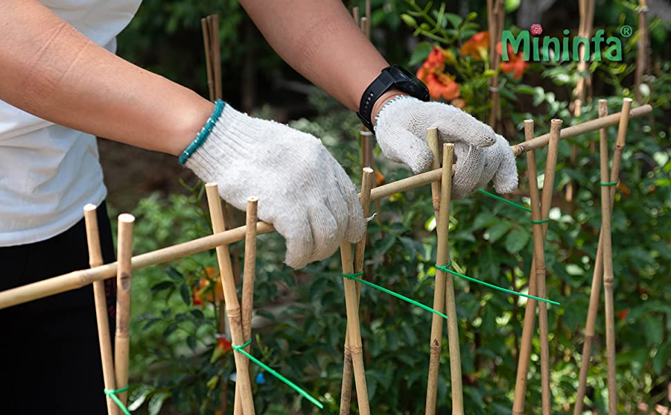 Bamboo stakes1
