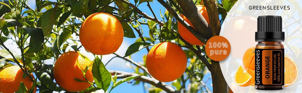 GREENSLEEVES Orange Essential Oil