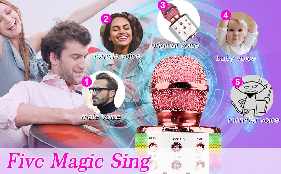 Wireless Karaoke Microphone Bluetooth Speaker Mic Gift Toy Kids Adults LED Lights Recording Sing