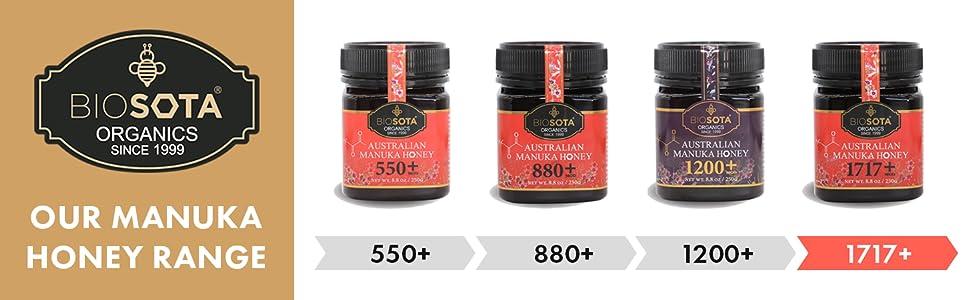 Manuka Honey 1717