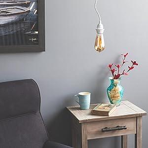 plant cup mug sofa book swag light cord pendant lamp cord set lights for room room light