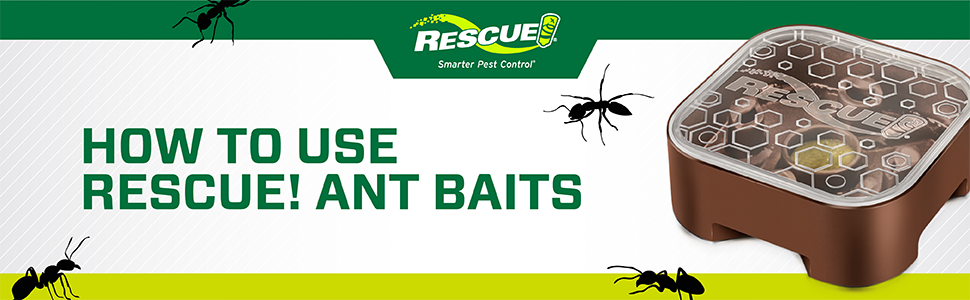 How to Use RESCUE! Ant Baits