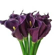 """Purple Calla Lily 25"""""""