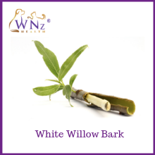 White willow bark aspirin nsaids rimadyl pain relief