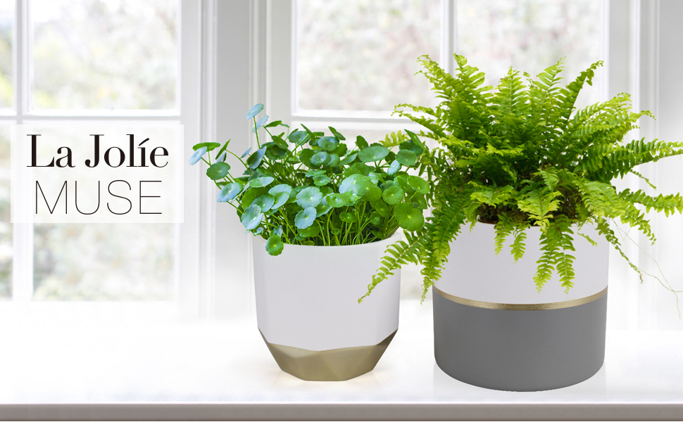 White ceramic flower pots with gold and grey detailing banner