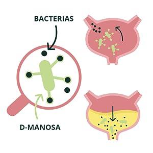 Manosa, 100 go 300 g, de polvo de manosa pura, ayuda natural para tu vejiga, contra infecciones del tracto urinario, de Vegavero