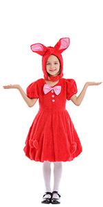 Bunny Costume Halloween