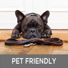 pet friendly doormat