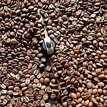 fresh coffee roasters