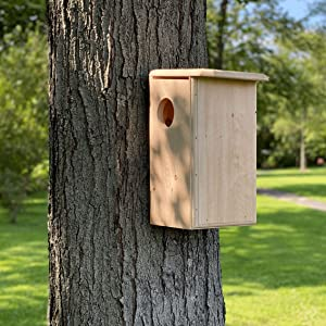 The Wakefield Squirrel House is easy to mount on a tree or pole. Low maintenance.