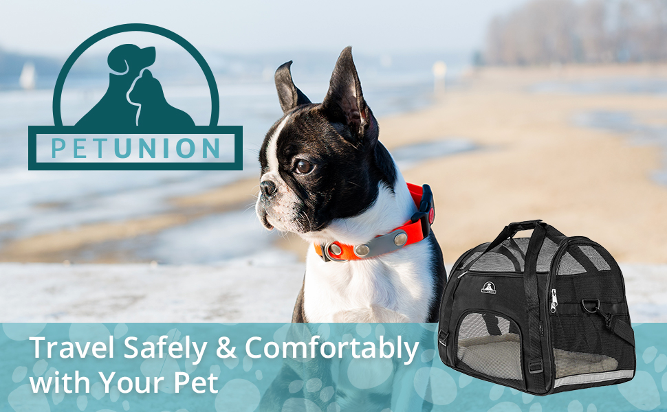 Boston Terrier sitting outside with PETUNION pet carrier