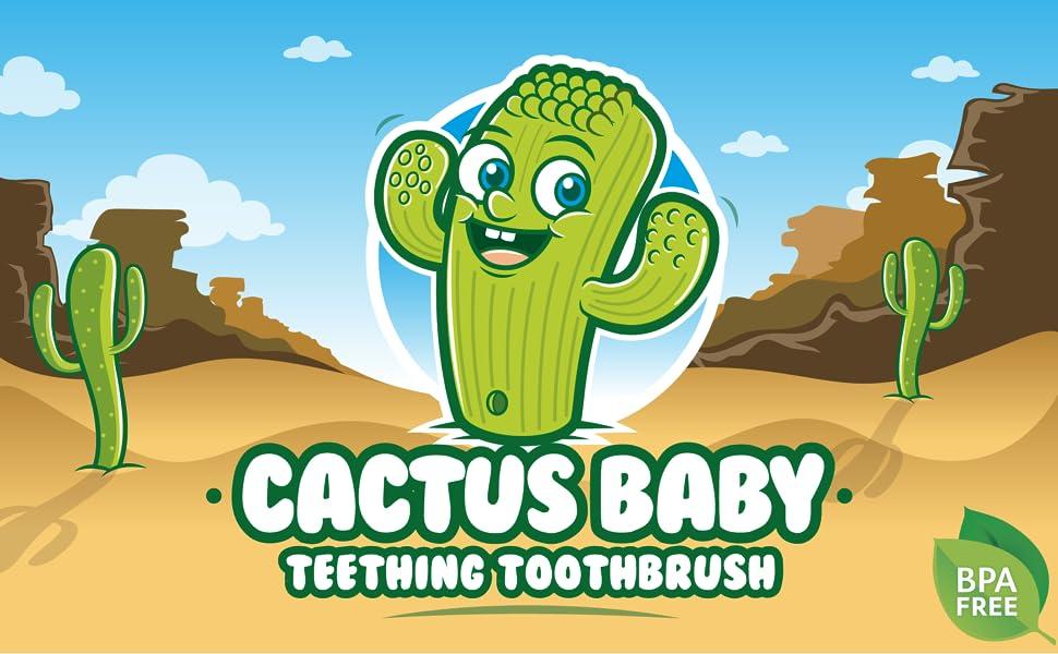 Main Cactus Image