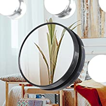 Detachable 10X Magnifying Mirror