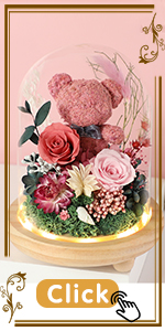 pink red mist pink petal rosemary orchid hot pink coral camellia red bear