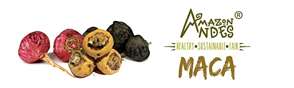 MACA AMAZON ANDES HEALTHY