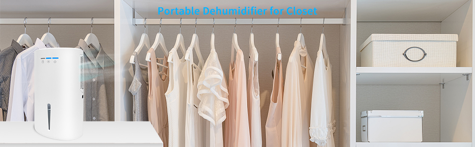 dehumidifiers for closet