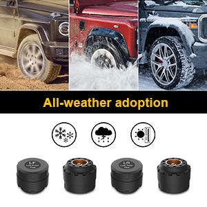 All-weather adoption