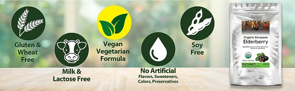 free of gluten dairy vegan
