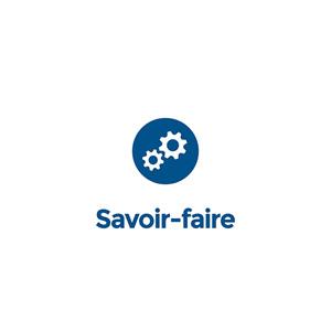Savoir Faire Favex Chauffage d'appoint Gaz