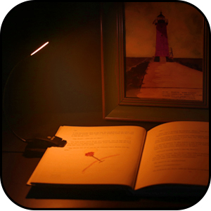 book lights for reading at night in bed,book light for reading in bed,