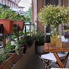 garden, wildflowers, annual, perennial, biennial, flower, seeds, heirloom seeds, non gmo, DIY