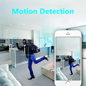motion detection hidden camera