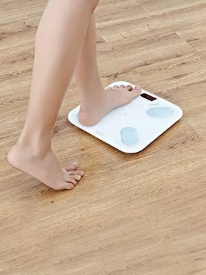 body weight scale bathroom